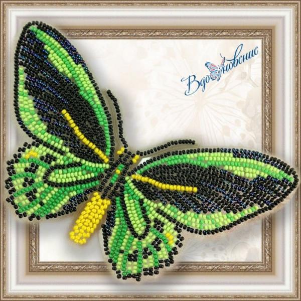 BGP-008 Бабочка Птицекрыл Приам. ТМ Вдохновение. Набор для вышивки бисером на прозрачном пластике