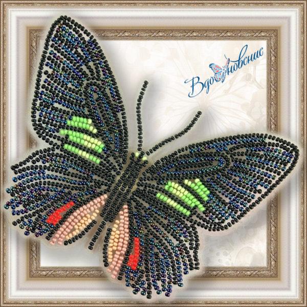 BGP-006 Бабочка Parides sesostris zestos. ТМ Вдохновение. Набор для вышивки бисером на прозрачном пластике